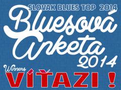 Bluesova-anketa-2014