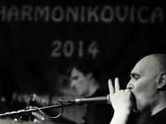 harmonikovica2