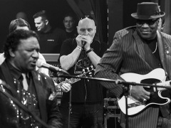 Blues-Alive-2014