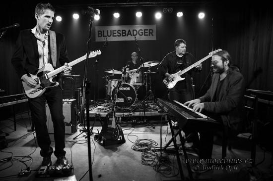 Bluesbadger-2015-4