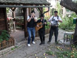 Dobré ráno blues band je česko-americké trio