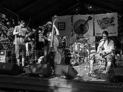 Roots-Blues-Festival-4