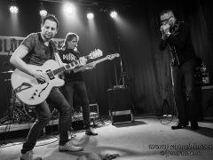 Bluesbadger-2014