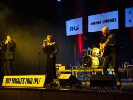 Hot Tamales Trio na Blues Aperitiv 2017